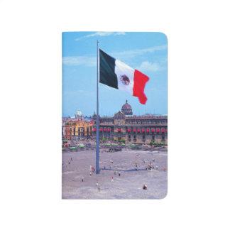 Zocalo, Mexico City, Mexico Journal