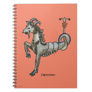 Zodiac: Capricorn, 1482 Notebooks