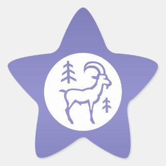 ZODIAC Capricorn Star Sticker