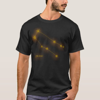 Zodiac - Gemini T-Shirt