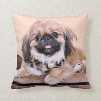 Zoe - Pekingese Cushion