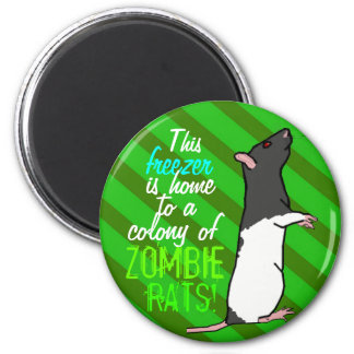 Zombie rat round magnet (black hood rat)