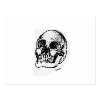 Zombie Skull Drawing 9 Postcard