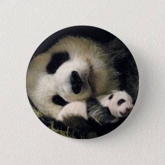 zoo-atlanta_giant_panda_lun-lun_and_cub 6 cm round badge