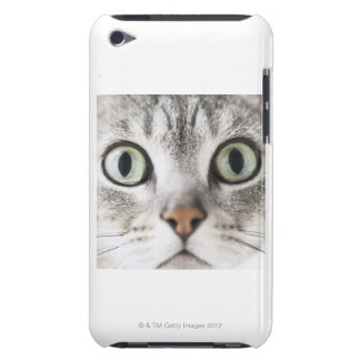 Zoom-up of cat face barely there iPod covers