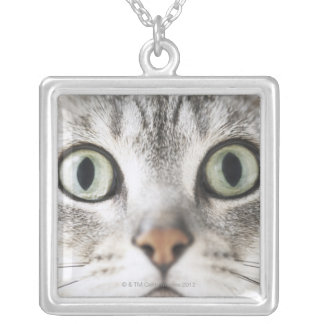 Zoom-up of cat face silver plated necklace
