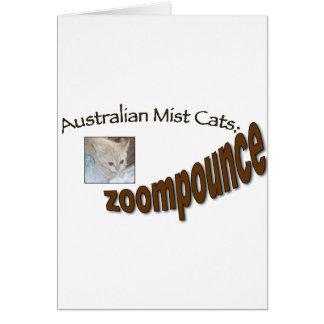 zoompounce kitten card