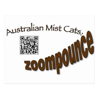 zoompounce qr.png postcard