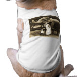 Zora and Trilby 1916 Pet Tshirt