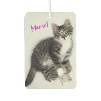 Zorro Kitty With Mouse Air Freshener
