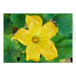 Zucchini Flower Card