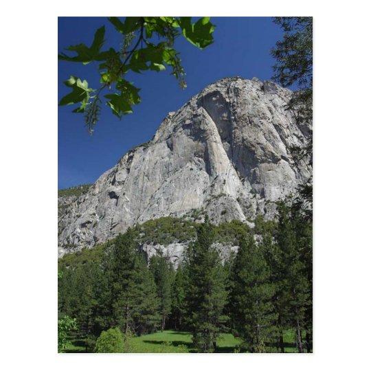 Zumwalt Meadows Cliffs Sequoia Postcard