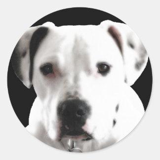 zyta!.jpg round sticker